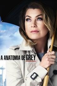 Grey's Anatomy / Anatomia de Grey / Greys Anatomy