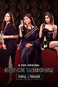 Black Widows S01 2020 Zee5 Web Series Hindi WebRip All Episodes 90mb 480p 300mb 720p 500mb 1080p