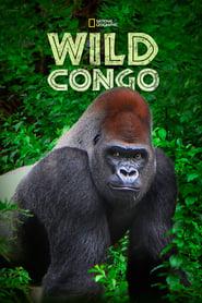 Wild Congo 2014