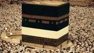 CNN Special Report Season 40 Episode 2 : Saudi Arabia: Kingdom of Secrets