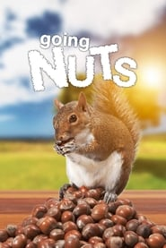 Going Nuts – Tales from the Squirrel World (2019)