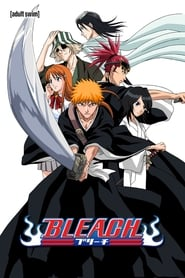 Bleach - Season 1 Episode 291 : Desperate Struggle with Aizen! Hirako, Shikai!