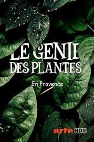 Le génie des plantes – En Provence