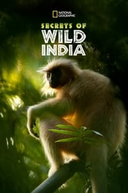 Secrets of Wild India 2012