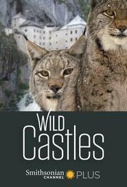 Wild Castles 2017