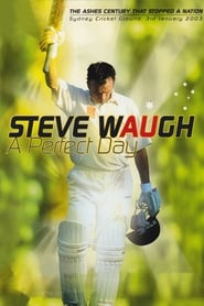 Steve Waugh: A Perfect Day