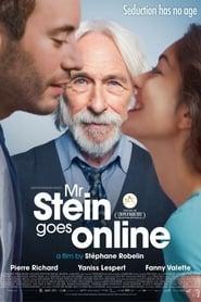 Poster Mr. Stein Goes Online 2017