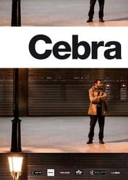 Cebra 2014