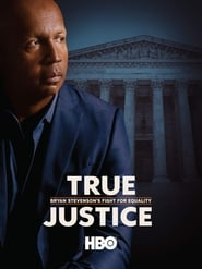 True Justice: Bryan Stevenson's Fight for Equality 2019 HD Watch and Download