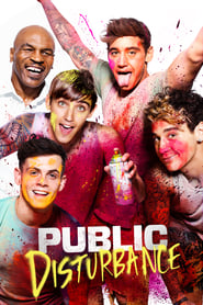 Public Disturbance (2018) 720p WEB-DL 700MB Ganool