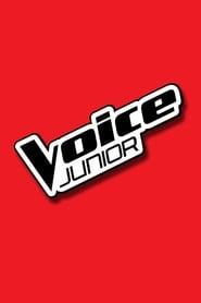 Voice Junior 2014
