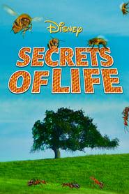 Secrets of Life (1956)
