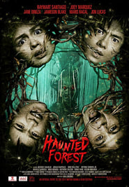 Watch Haunted Forest (2017)