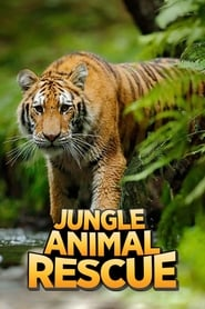 Jungle Animal Rescue Season 1 Episode 3