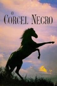 O Corcel Negro