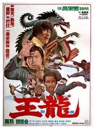 Affiche de Film Deadly Kick
