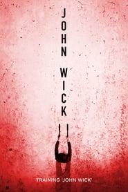Poster Training 'John Wick' 2017