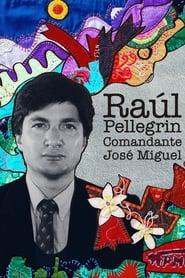 Raúl Pellegrin, Comandante José Miguel