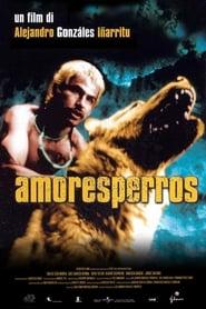 Amores perros 2000