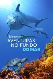 Imagem Aventuras no Fundo do Mar Torrent