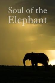 Soul of the Elephant