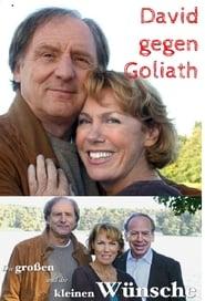 Die großen und die kleinen Wünsche - David gegen Goliath 2007