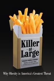 Killer at Large (2008)