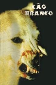 O Cão Branco