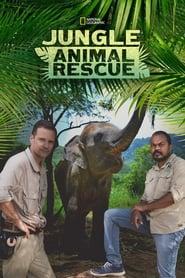 Jungle Animal Rescue