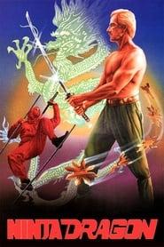Ninja Dragon 1986