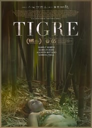 Tigre [2017][Mega][Latino][1 Link][1080p]