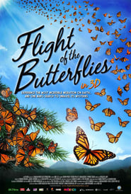 Stephanie Sigman Poster Flight of the Butterflies