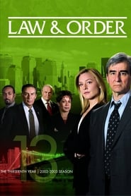 New York District / New York Police Judiciaire: Saison 13
