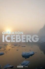 Operation Iceberg 2012