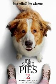 Był sobie pies 2 / A Dog's Journey (2019)