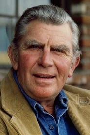 Image Andy Griffith