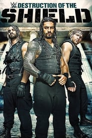 Journey to SummerSlam: The Destruction Of The Shield