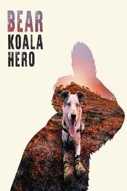 Bear: Koala Hero (2020)