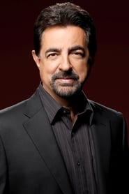 Image Joe Mantegna