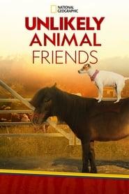 Unlikely Animal Friends 2012