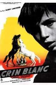 Voir Crin blanc: Le cheval sauvage streaming complet gratuit | film streaming, StreamizSeries.com
