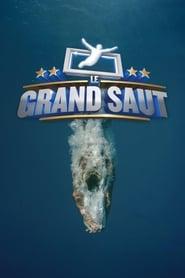 Le grand saut 2013