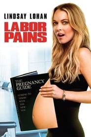 Assistir Labor Pains online