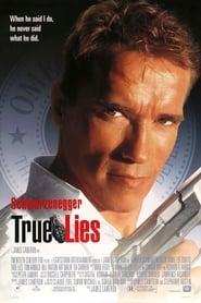 True Lies (1994) Hindi Dubbed