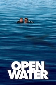 Poster Open Water 2003