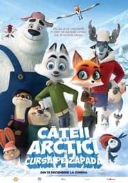 Cateii arctici: Cursa pe zapada (2019) dublat in romana