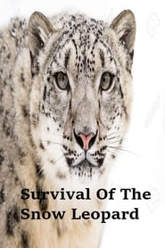 Survival Of The Snow Leopard