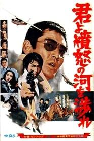 君よ憤怒の河を渉れ (1976)