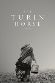 Poster The Turin Horse 2011