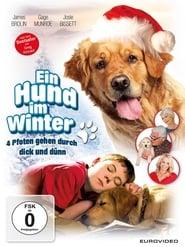 Ein Hund im Winter 2014
